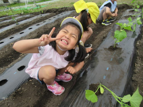 農作業からの・・・